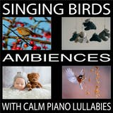 Singing Birds (With Calm Piano Lullabies) - undefined