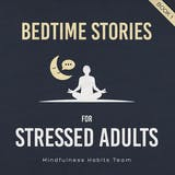Bedtime Stories for Stressed Adults: Sleep Meditation Stories to Melt Stress and Fall Asleep Fast Every Night - undefined