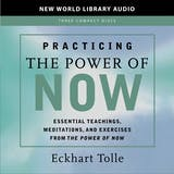Practicing the Power of Now - undefined