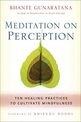 Meditation on Perception: Ten Healing Practices to Cultivate Mindfulness - undefined