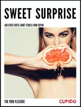 Sweet surprise - and other erotic short stories - undefined